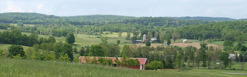 Panorama of Uphill Farm